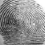 fingerprint11