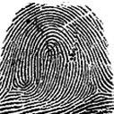 fingerprint7